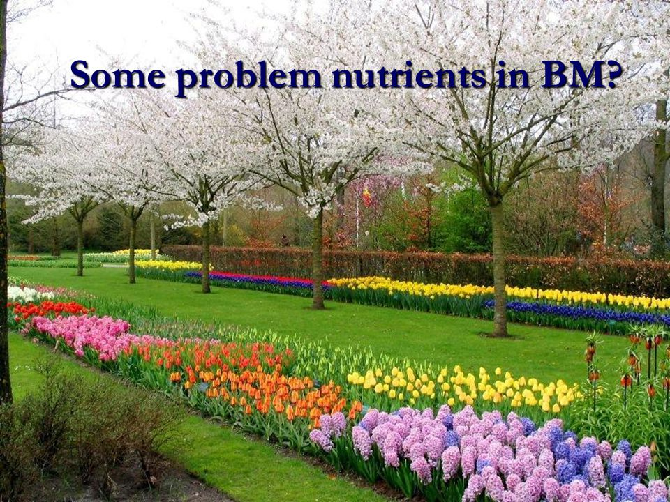 Some problem nutrients in BM