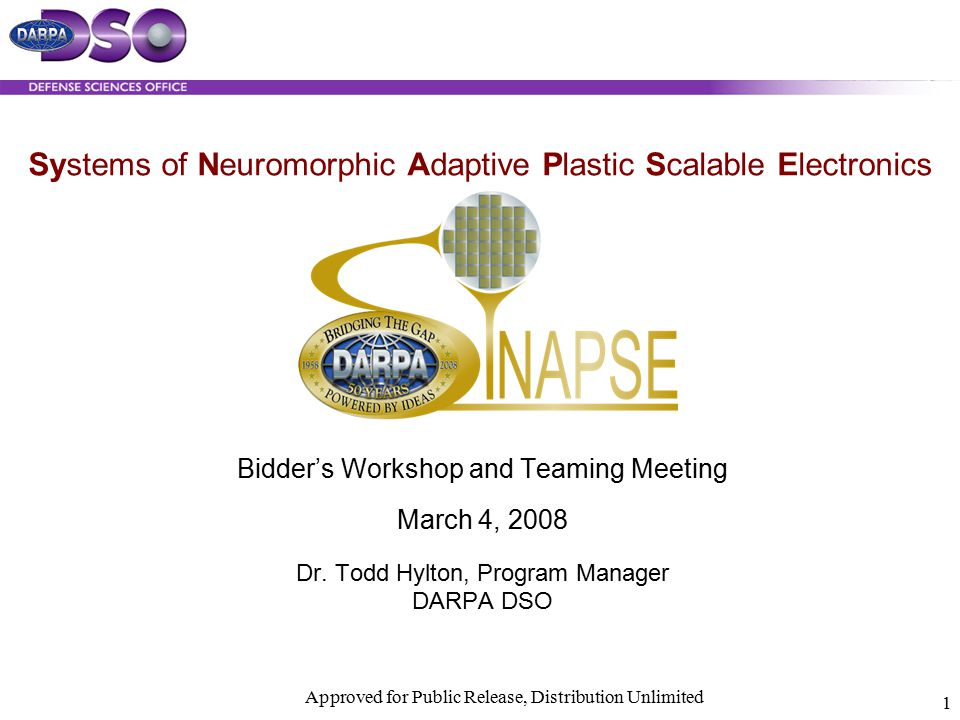 Systems of Neuromorphic Adaptive Plastic Scalable Electronics