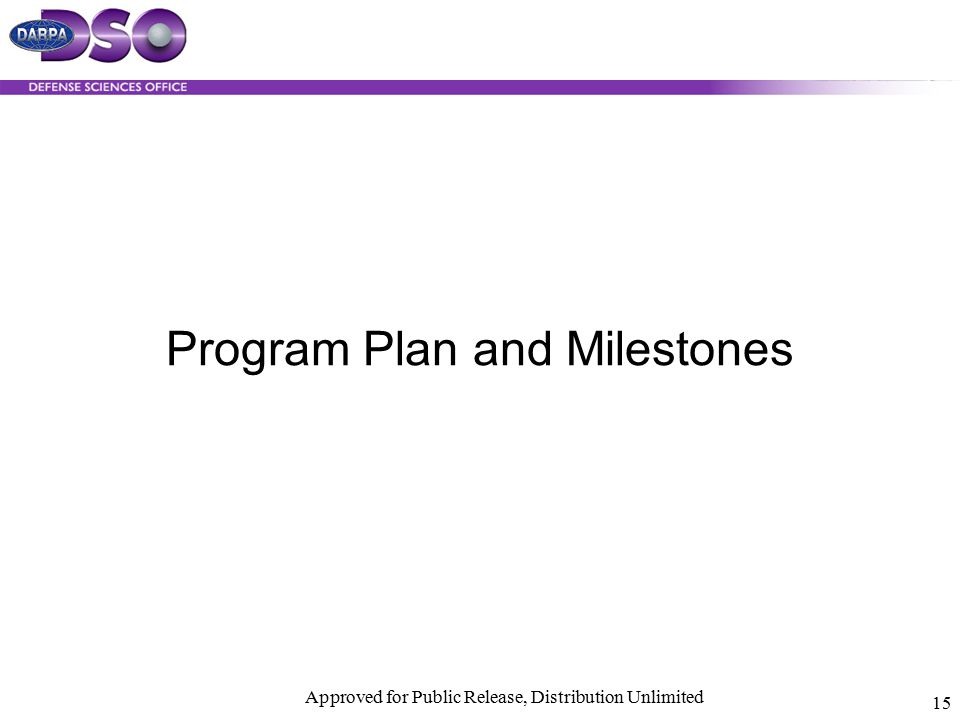 Program Plan and Milestones