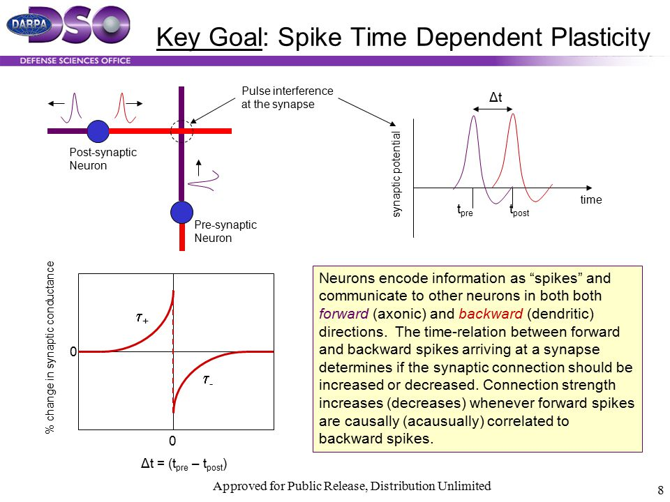 Key Goal: Spike Time Dependent Plasticity