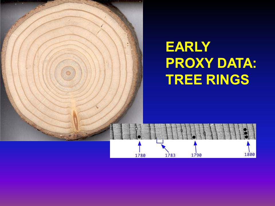 EARLY PROXY DATA: TREE RINGS