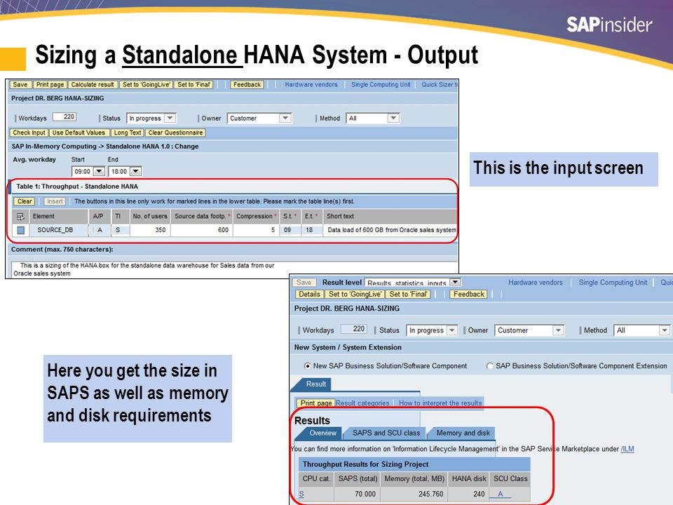Sizing a Standalone HANA System - Output