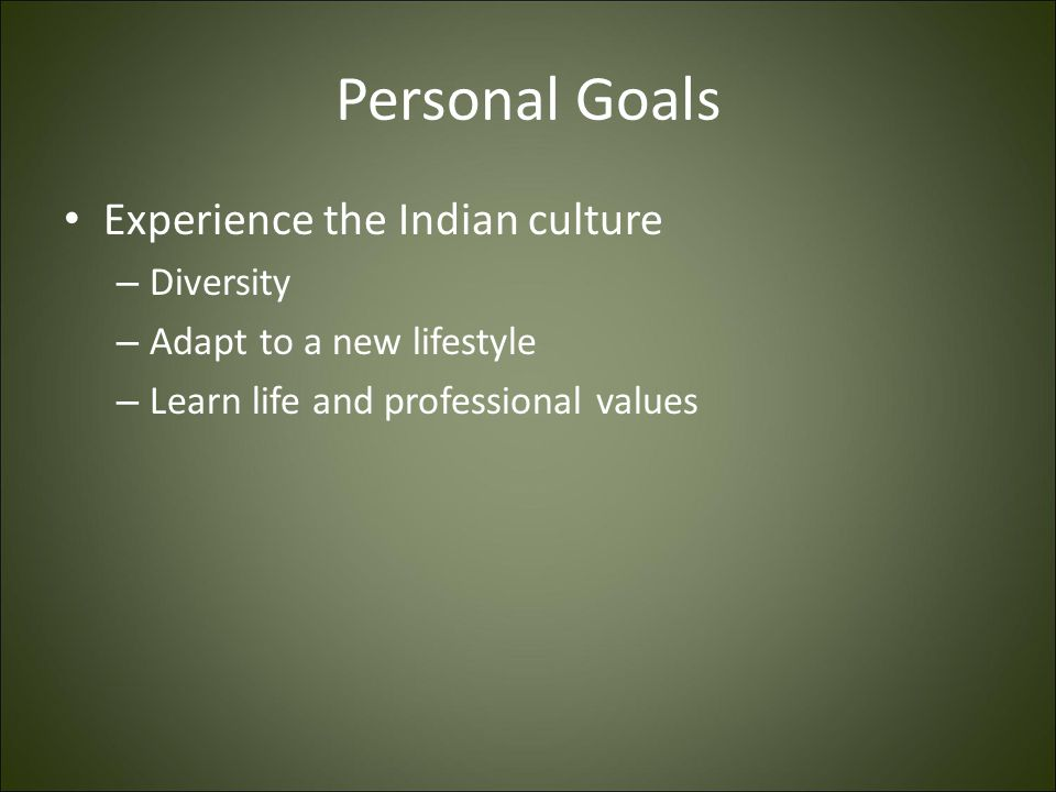 Personal Goals Experience the Indian culture Diversity