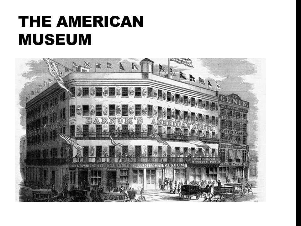 The American museum