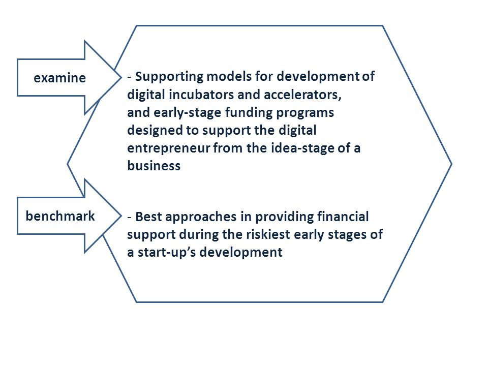 Supporting models for development of digital incubators and accelerators,