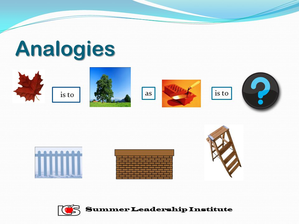 Analogies is to as is to Summer Leadership Institute