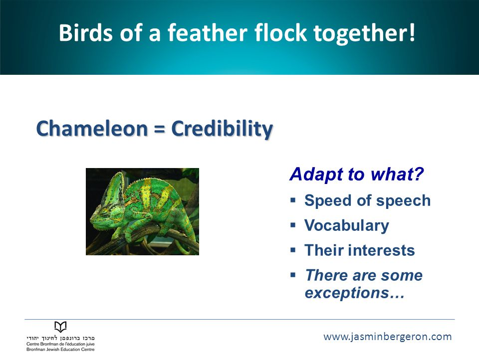 Birds of a feather flock together! Chameleon = Credibility