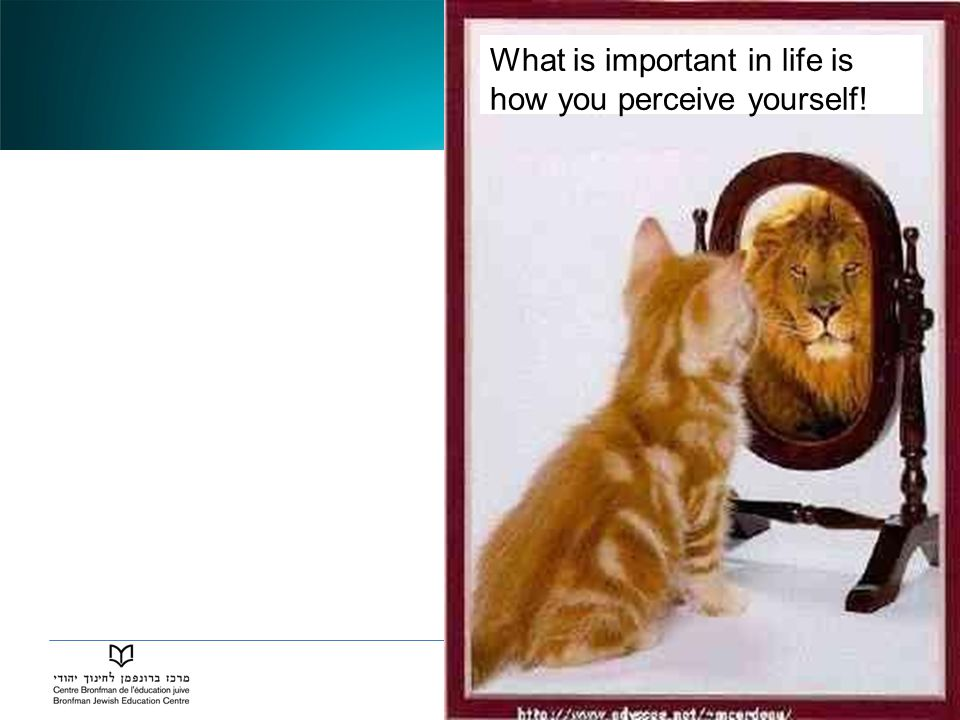 What is important in life is how you perceive yourself!
