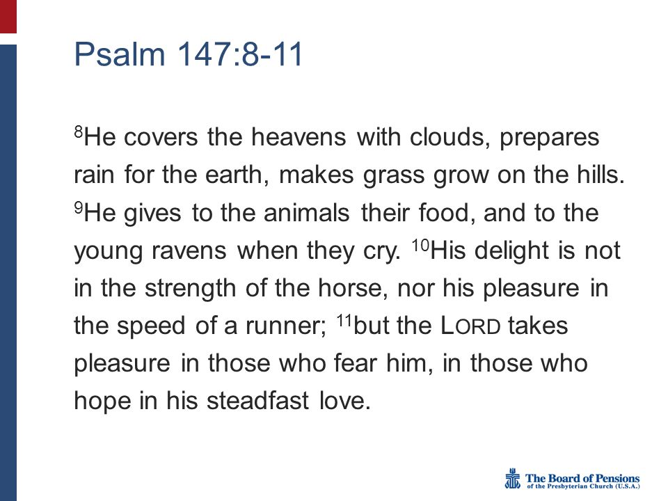 Psalm 147:8-11