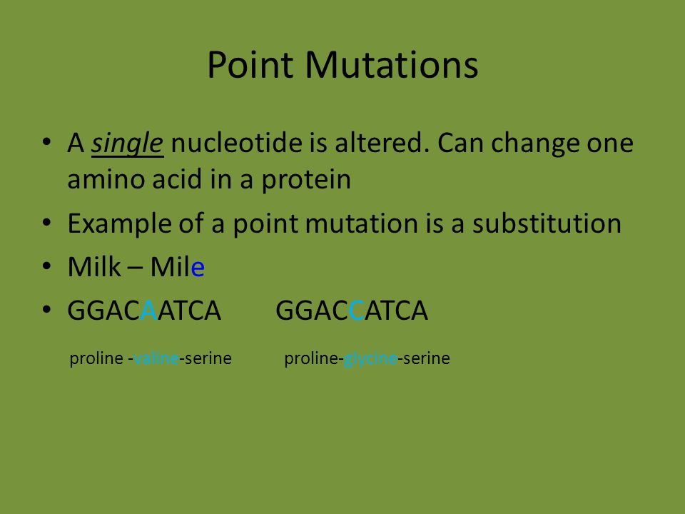 Point Mutations A single nucleotide is altered. Can change one amino acid in a protein. Example of a point mutation is a substitution.