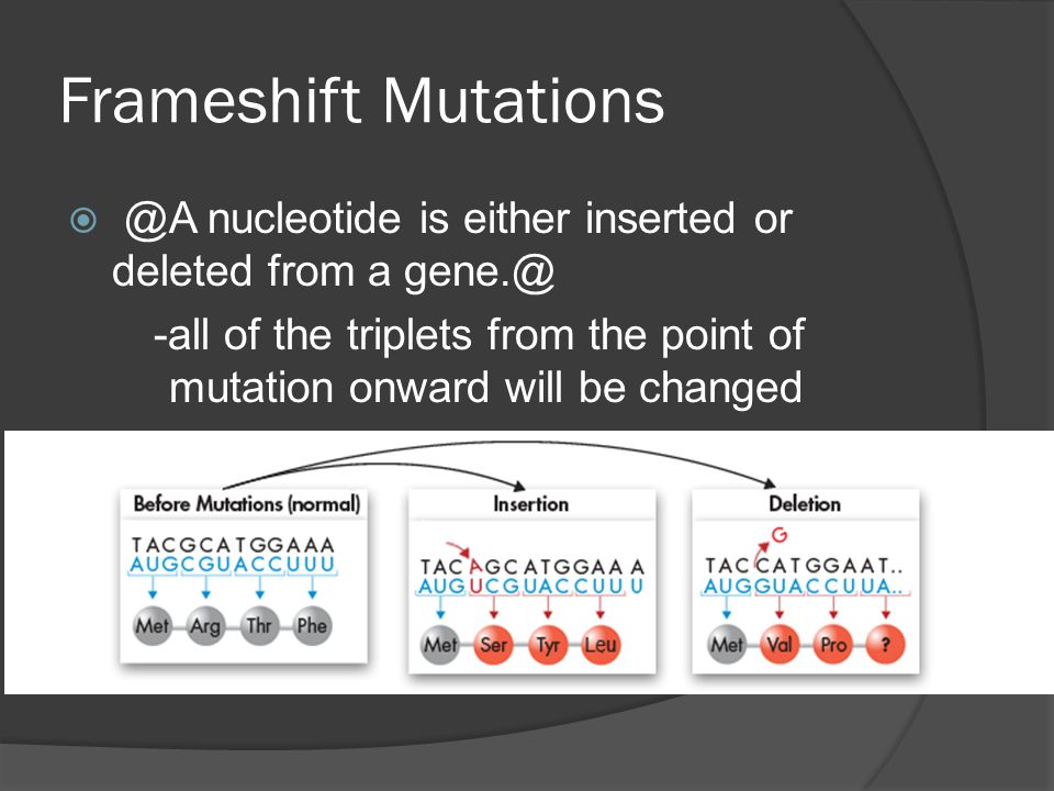 Frameshift Mutations @A nucleotide is either inserted or deleted from a gene.@