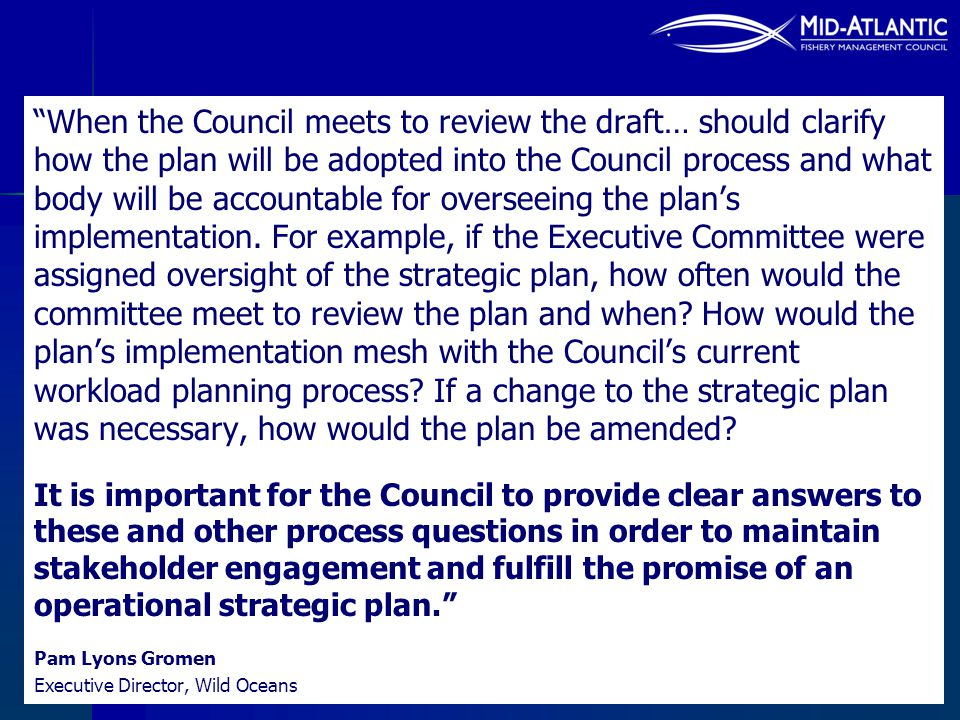 When the Council meets to review the draft… should clarify how the plan will be adopted into the Council process and what body will be accountable for overseeing the plan's implementation. For example, if the Executive Committee were assigned oversight of the strategic plan, how often would the committee meet to review the plan and when How would the plan's implementation mesh with the Council's current workload planning process If a change to the strategic plan was necessary, how would the plan be amended