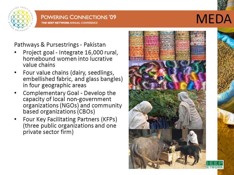 MEDA Pathways & Pursestrings - Pakistan