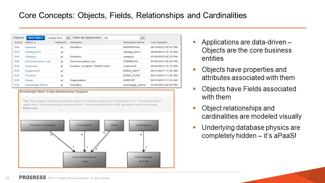 Core Concepts: Objects, Fields, Relationships and Cardinalities