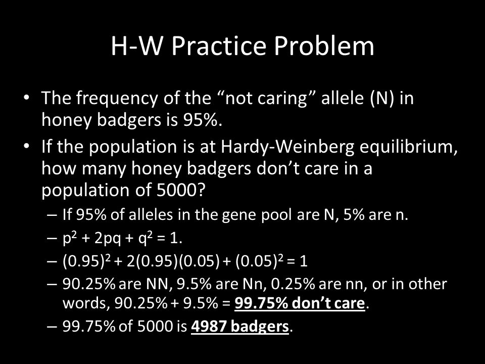 H-W Practice Problem The frequency of the not caring allele (N) in honey badgers is 95%.