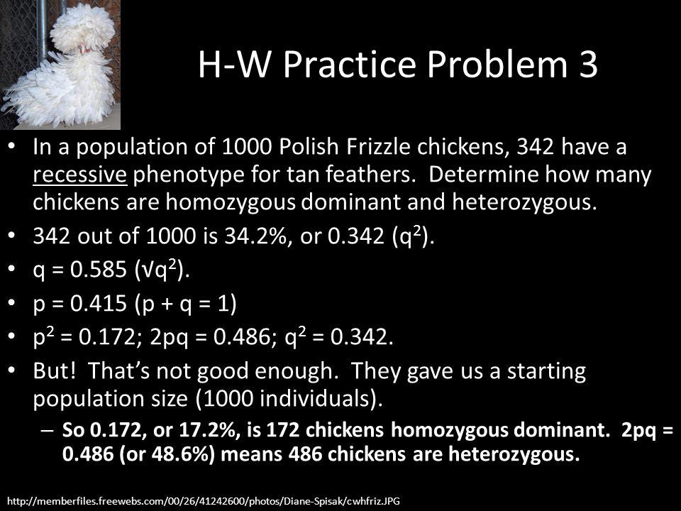 H-W Practice Problem 3
