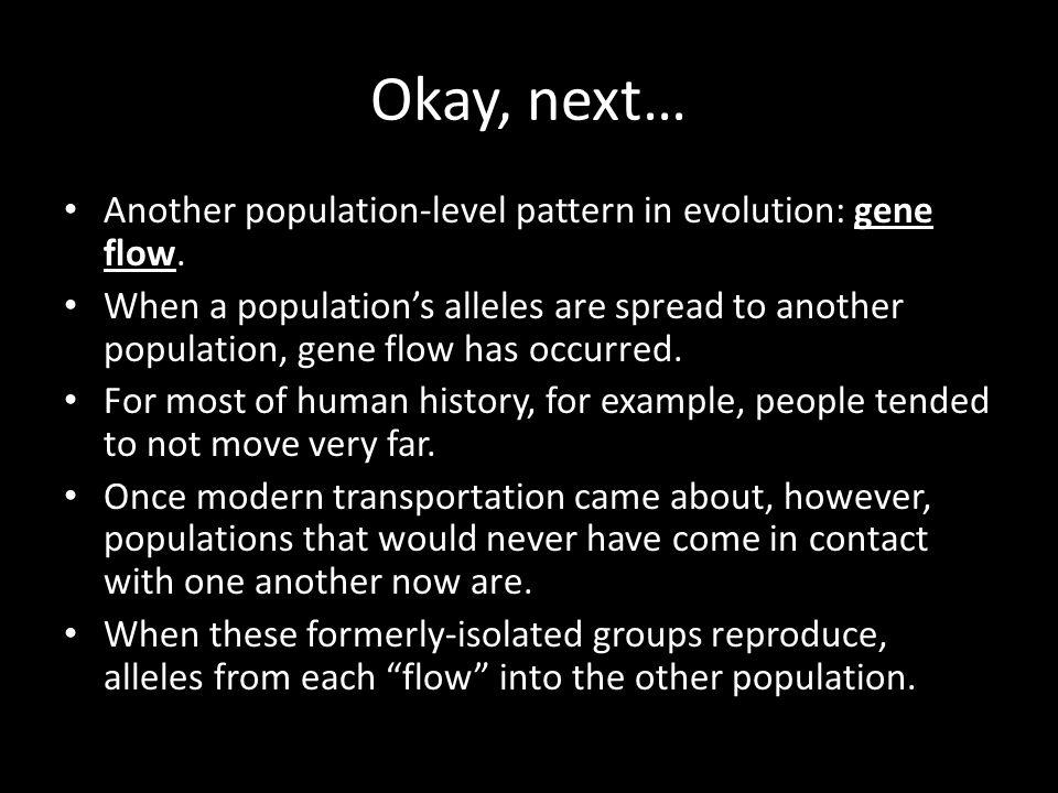 Okay, next… Another population-level pattern in evolution: gene flow.
