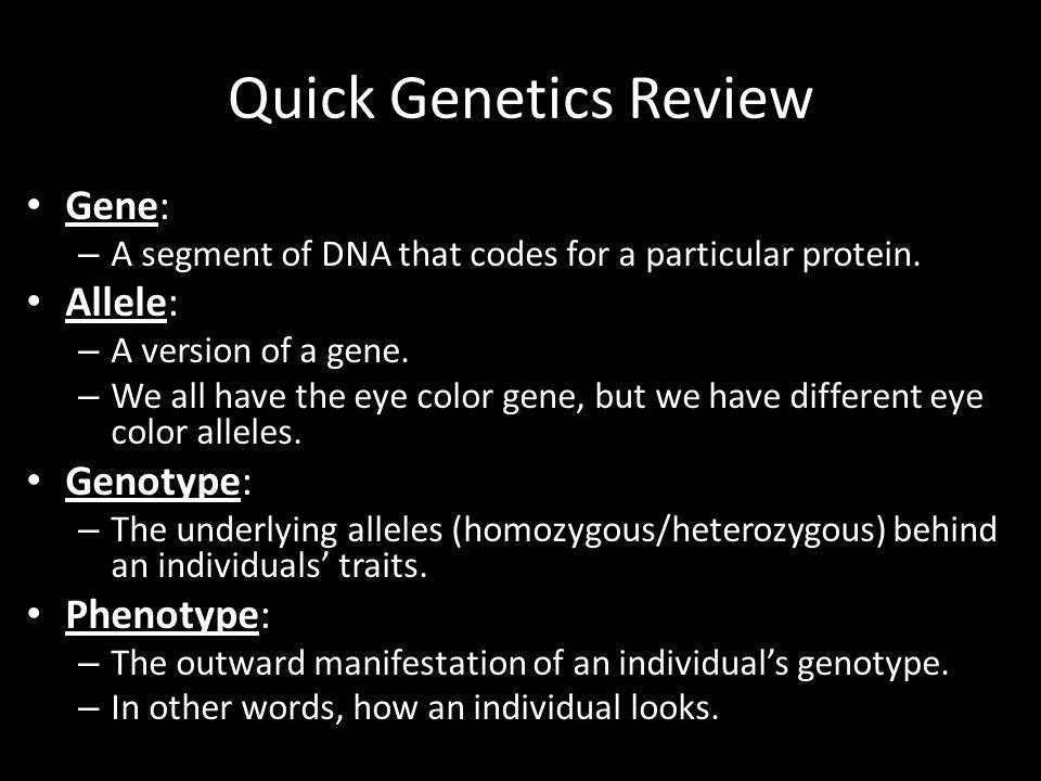Quick Genetics Review Gene: Allele: Genotype: Phenotype: