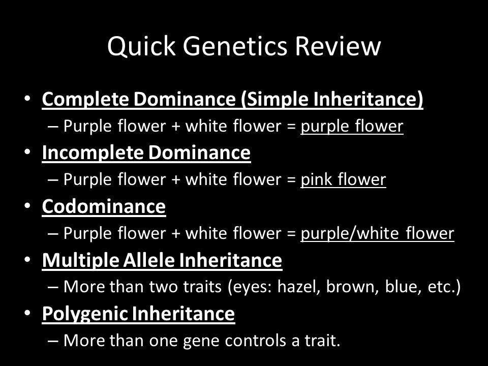 Quick Genetics Review Complete Dominance (Simple Inheritance)