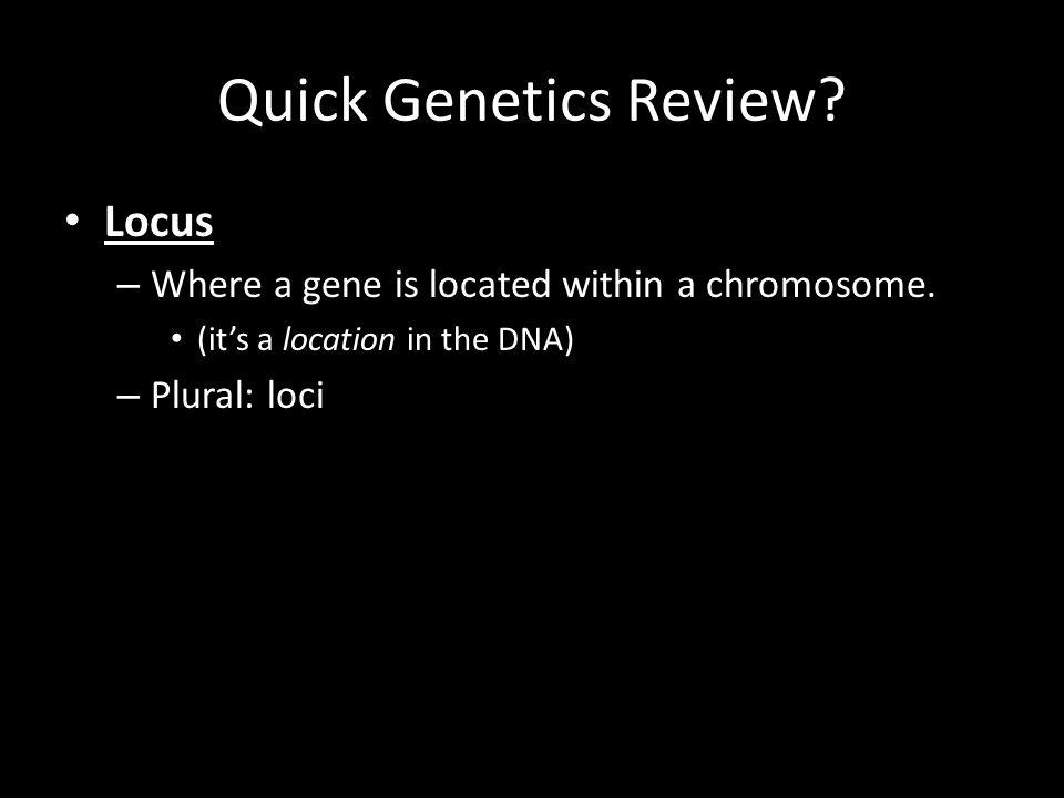 Quick Genetics Review Locus