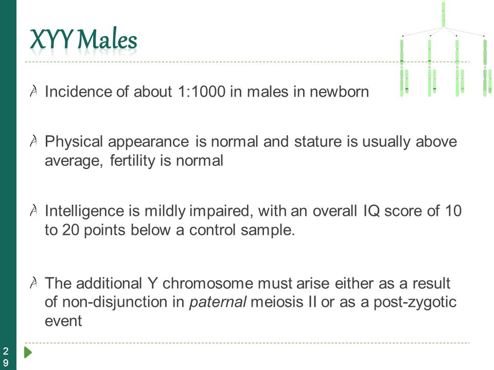 XYY Males Incidence of about 1:1000 in males in newborn