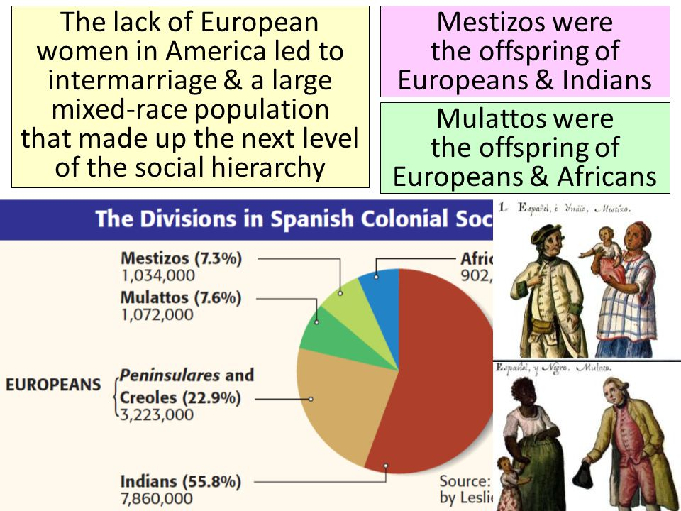 Mestizos were the offspring of Europeans & Indians