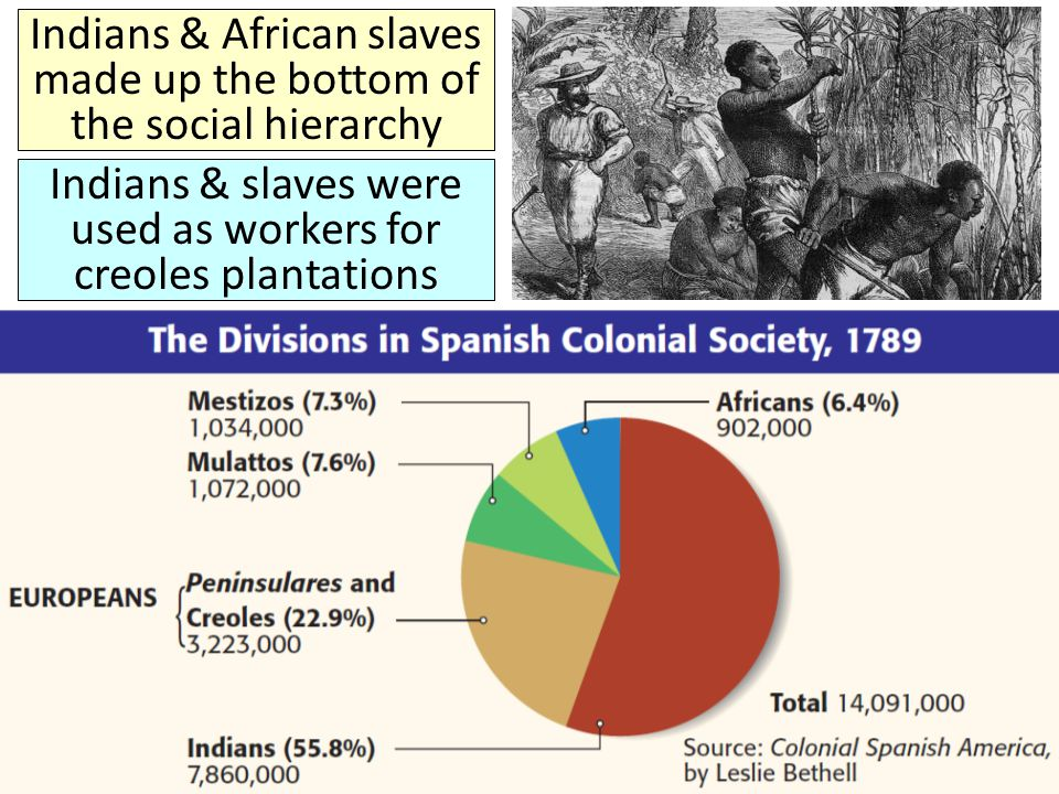 Indians & African slaves made up the bottom of the social hierarchy