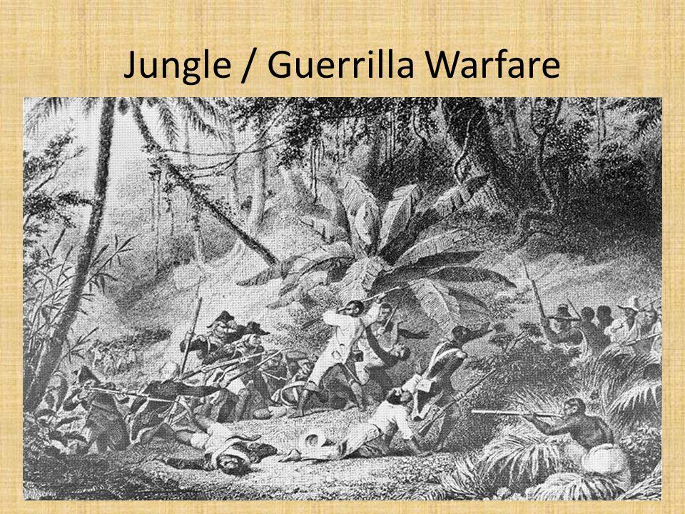 Jungle / Guerrilla Warfare