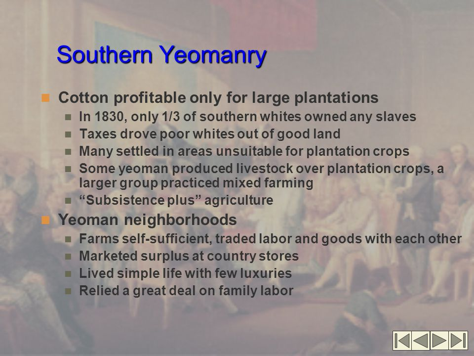 Southern Yeomanry Cotton profitable only for large plantations