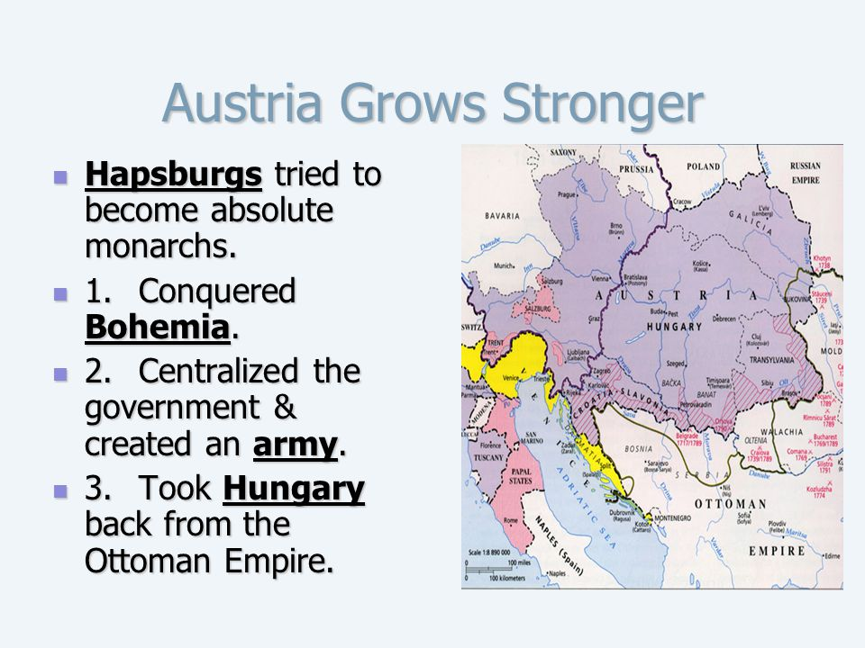 Austria Grows Stronger