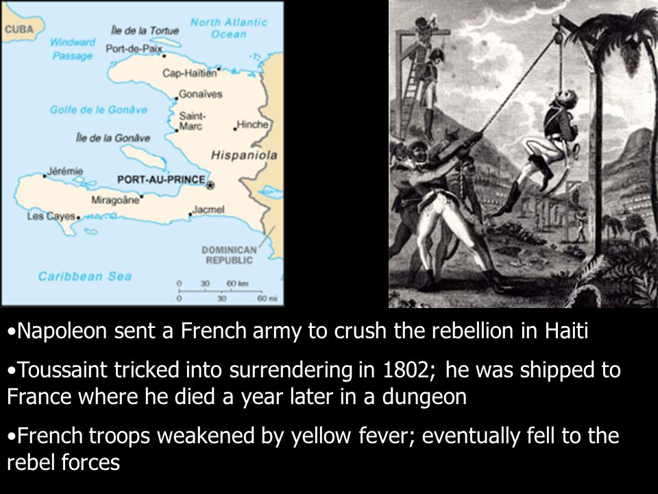 Napoleon sent a French army to crush the rebellion in Haiti