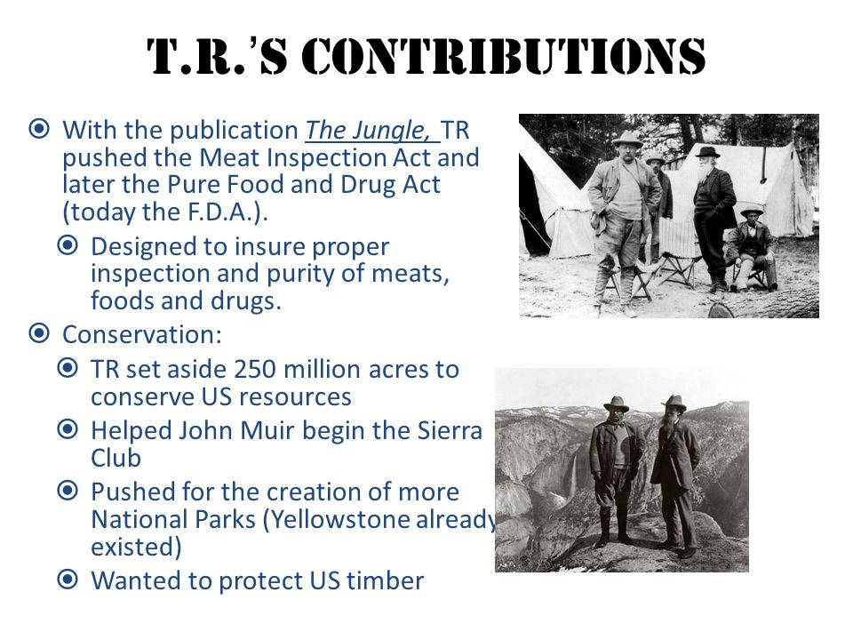 T.R.'s Contributions With the publication The Jungle, TR pushed the Meat Inspection Act and later the Pure Food and Drug Act (today the F.D.A.).