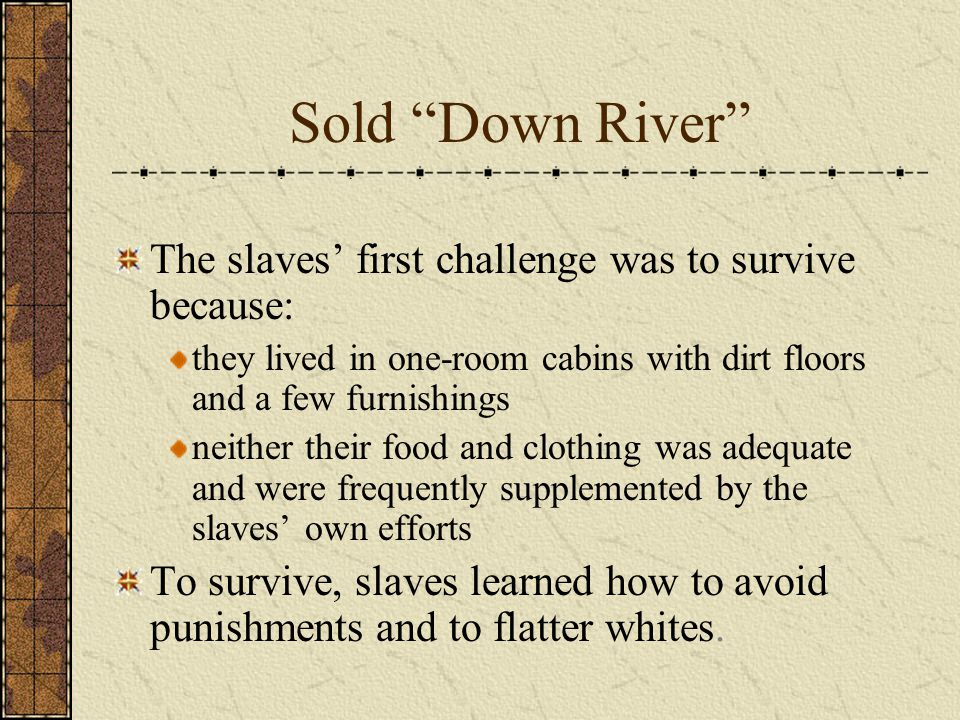 Sold Down River The slaves' first challenge was to survive because: