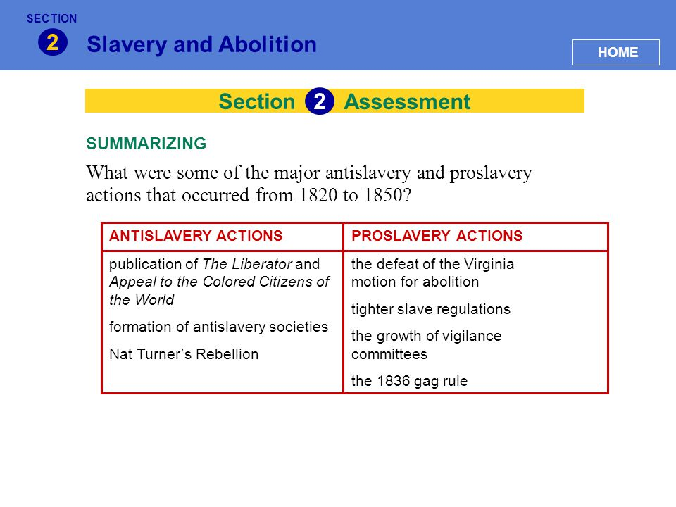 2 Slavery and Abolition 2 Section Assessment