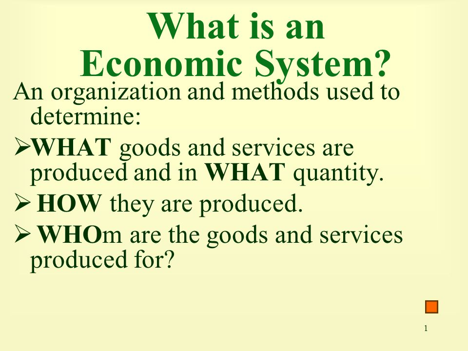 What is an Economic System