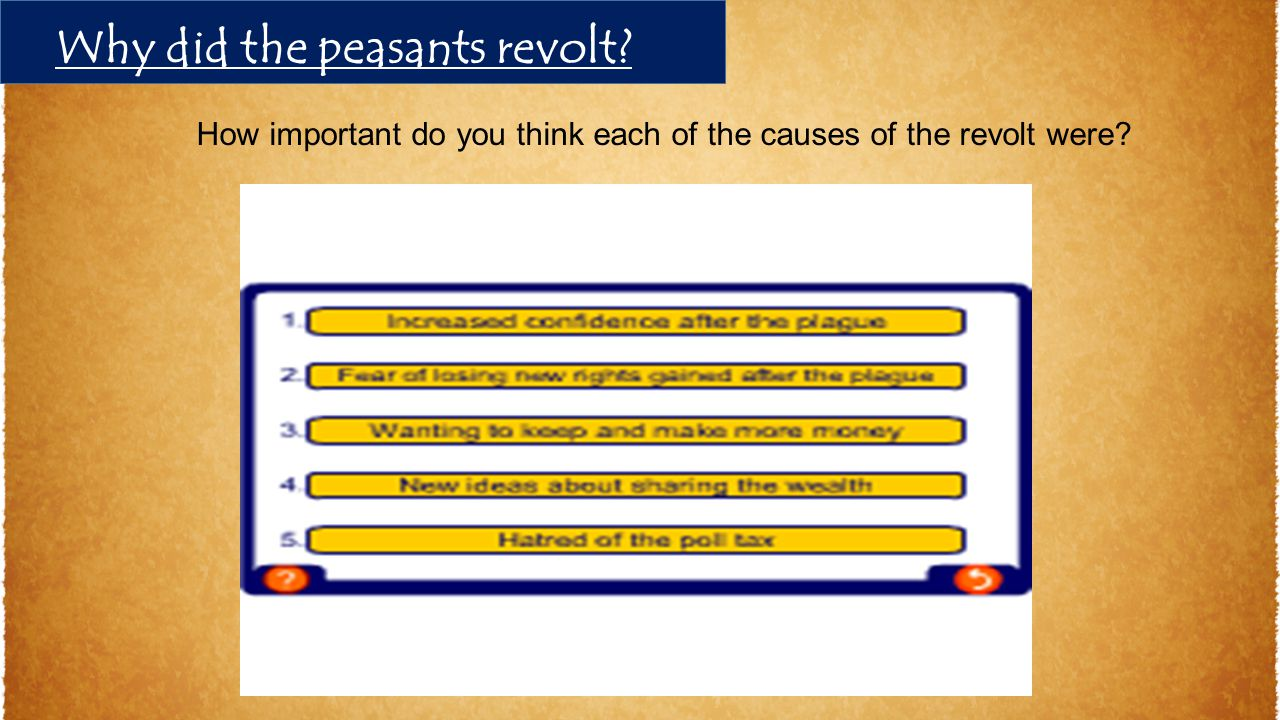 Why did the peasants revolt