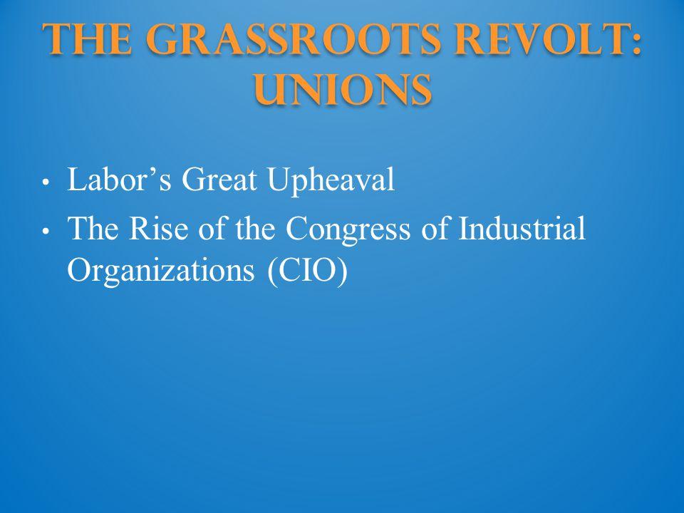 The Grassroots Revolt: Unions