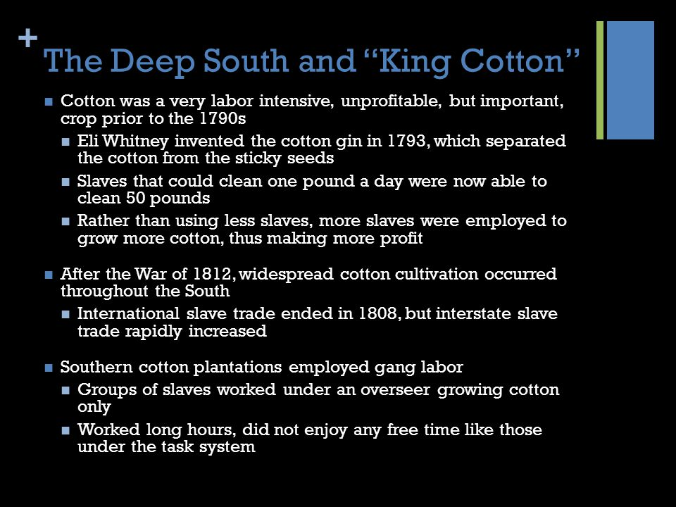 The Deep South and King Cotton