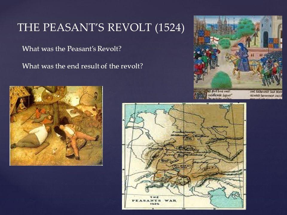 THE PEASANT'S REVOLT (1524)