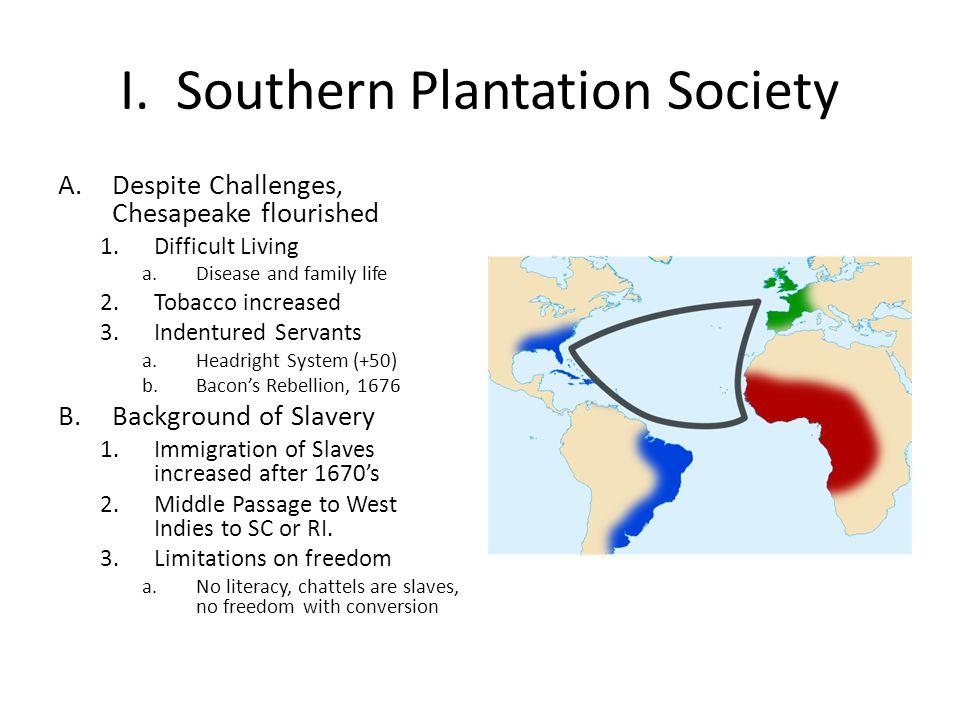 I. Southern Plantation Society