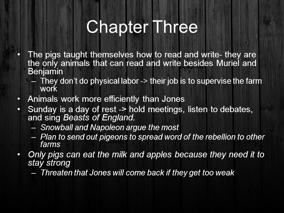 Chapter Three The pigs taught themselves how to read and write- they are the only animals that can read and write besides Muriel and Benjamin.