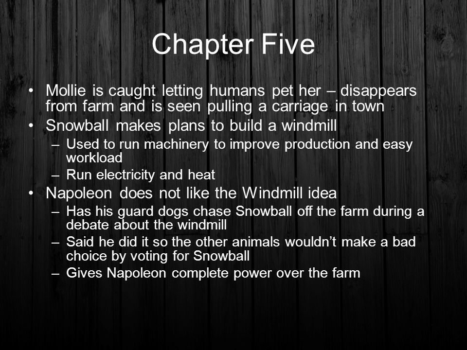 Chapter Five Mollie is caught letting humans pet her – disappears from farm and is seen pulling a carriage in town.