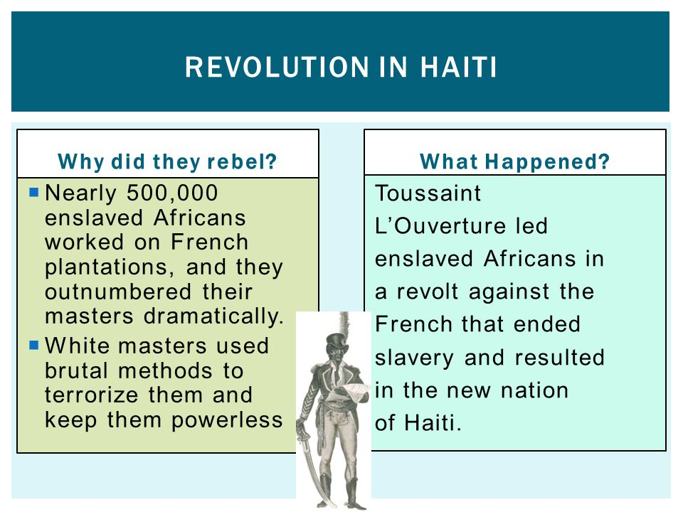 Revolution in HAITI Why did they rebel What Happened