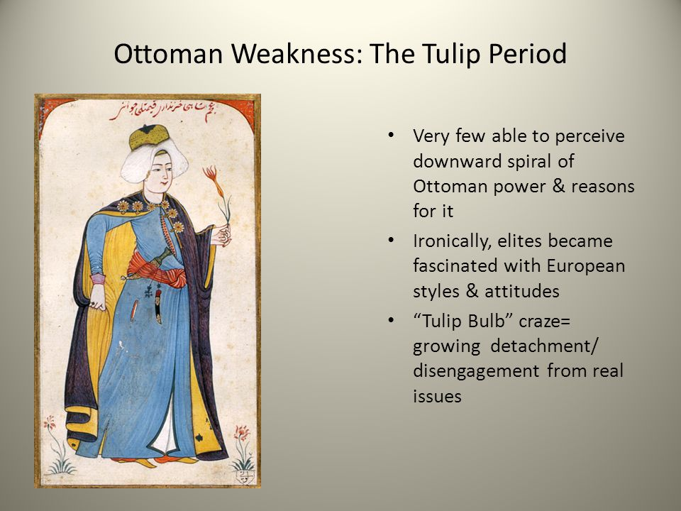 Ottoman Weakness: The Tulip Period