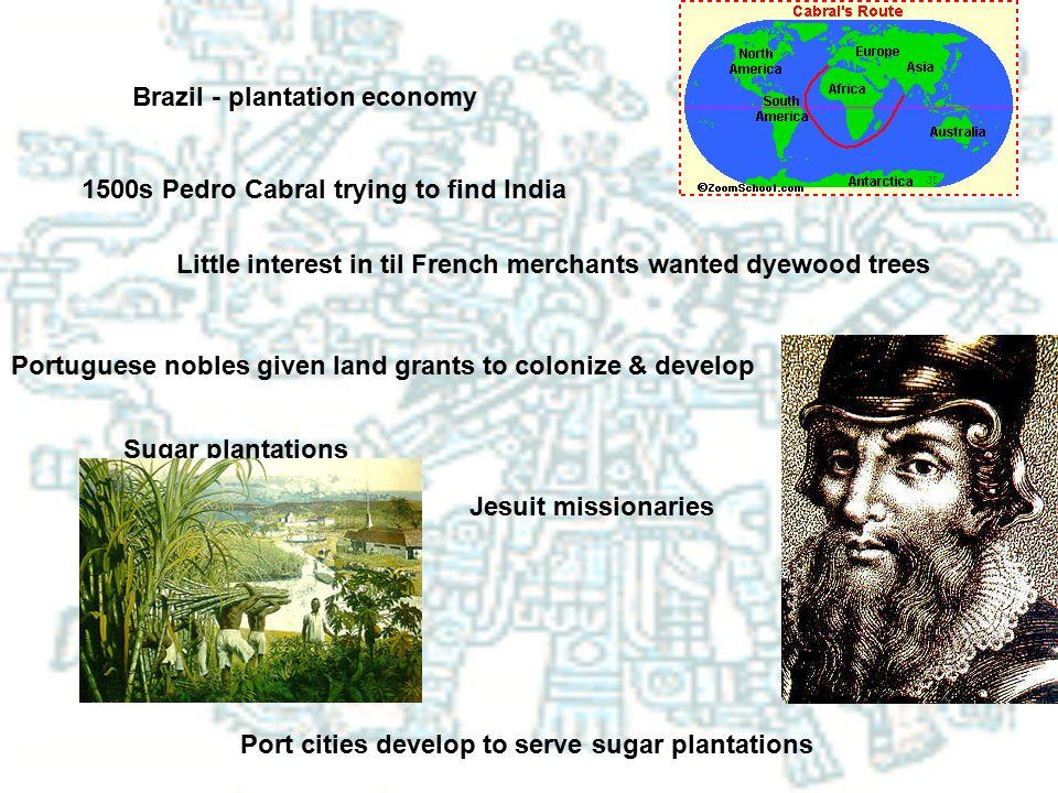 Brazil - plantation economy