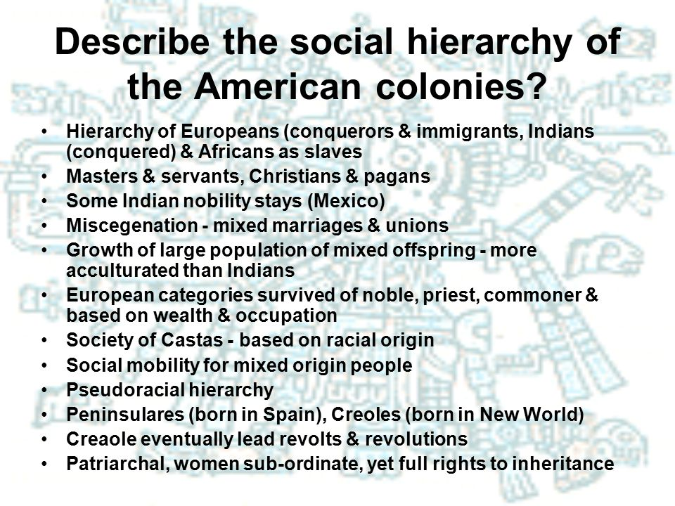 Describe the social hierarchy of the American colonies