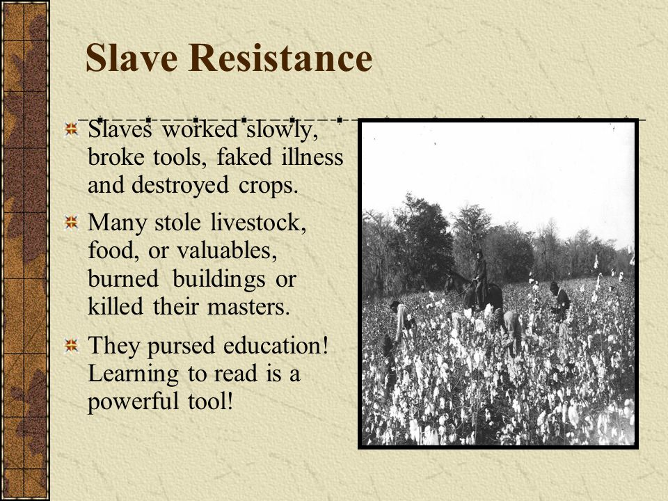 Slave Resistance Slaves worked slowly, broke tools, faked illness and destroyed crops.