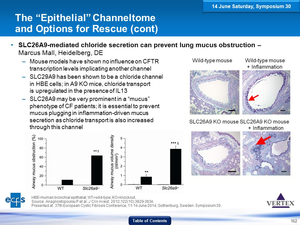 The Epithelial Channeltome and Options for Rescue (cont)