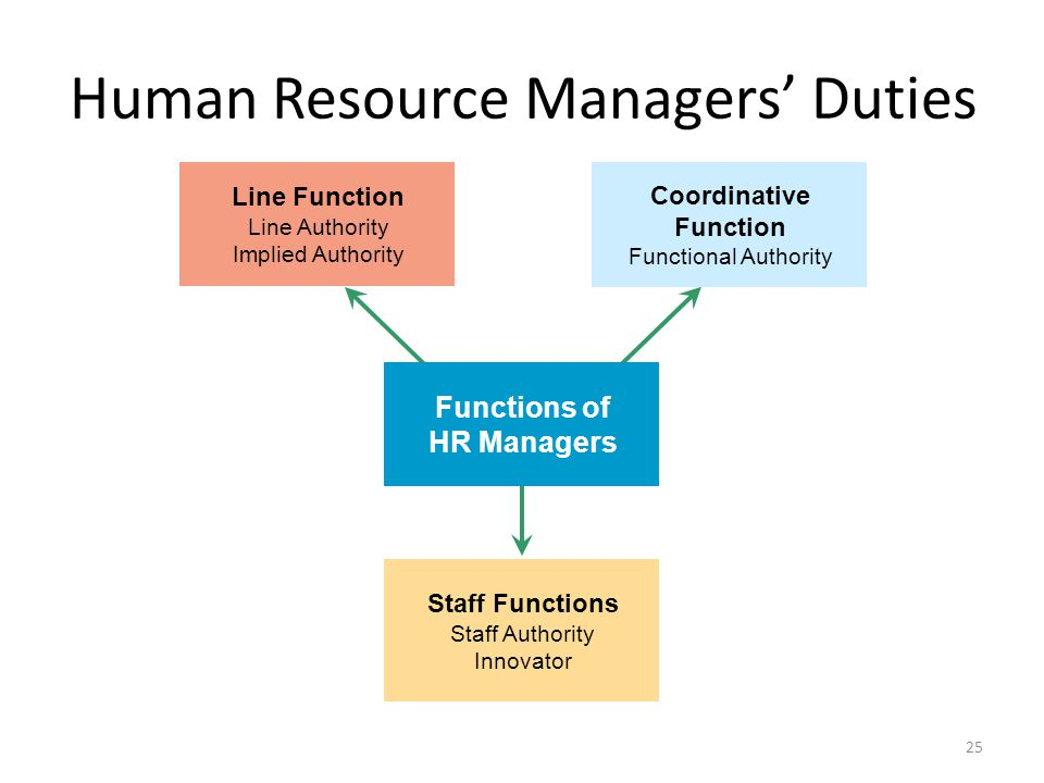 Human Resource Managers' Duties
