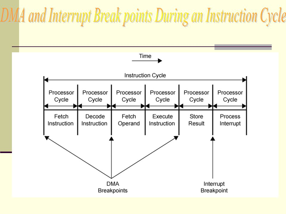 DMA and Interrupt Break points During an Instruction Cycle